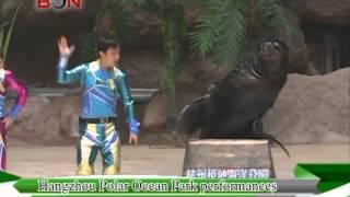 Hangzhou Polar Ocean Park Performance- China Travel New Links - Episode 172 - BONTV China