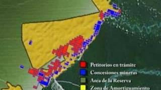 Baixar AMARAKAERI: La Reserva Comunal en Peligro