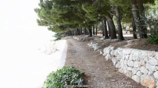 Camp site Dole - Živogošće - Dalmatia - camping Croatia