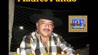 Andres Pulido - Por Fin Te Olvide