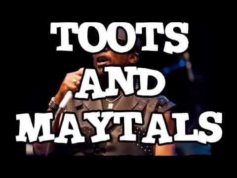 TOOTS and MAYTALS      DOG WAR