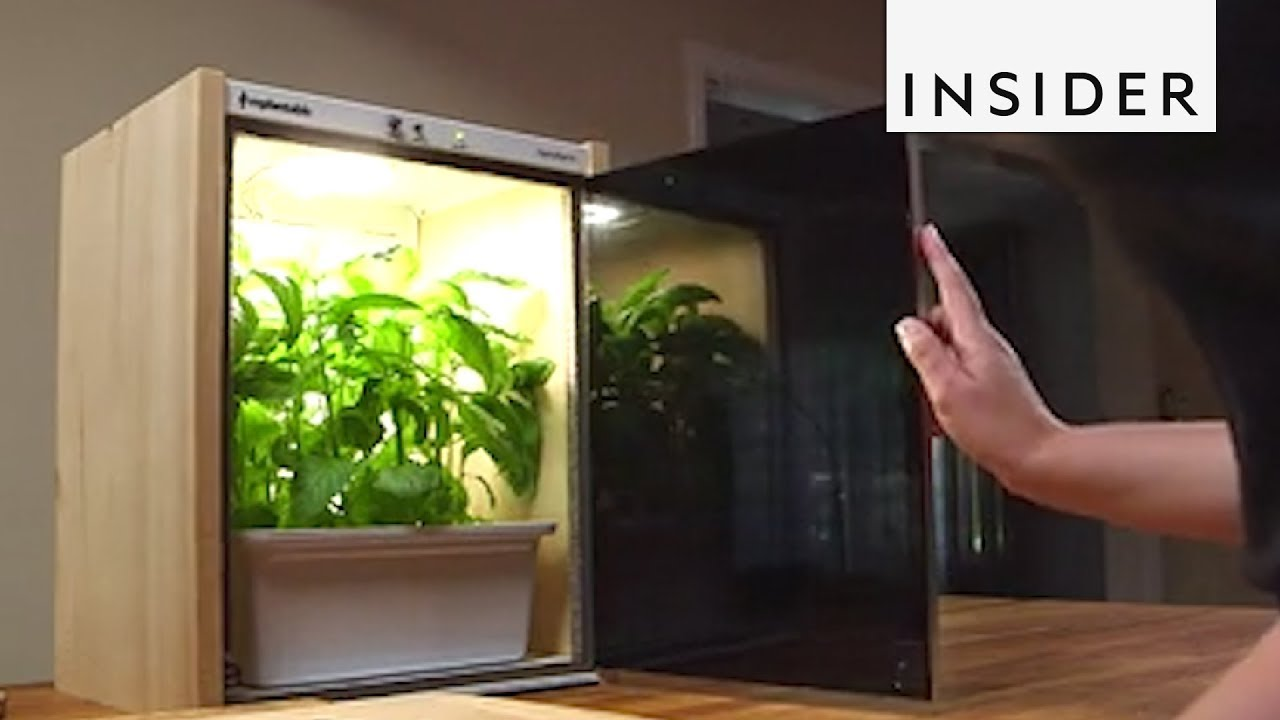 Inventions To Make Your Home Greener
