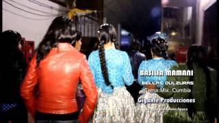 Gambar cover Basilia Mamani y las bellas dulzuras