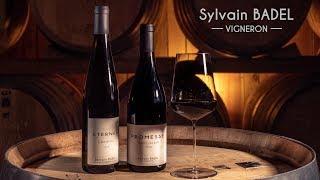 Sylvain BADEL vigneron
