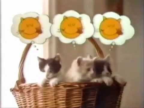happy cat cat food ad from 1982 youtube
