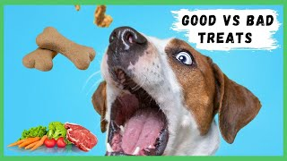 Choosing The Best Dog Training Treats | The Best Dog Training Treats for Positive Dog Training