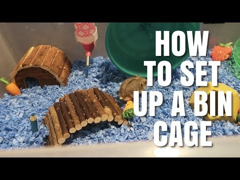 HOW TO SET UP A HAMSTER BIN CAGE! | For Dwarfs and Syrians
