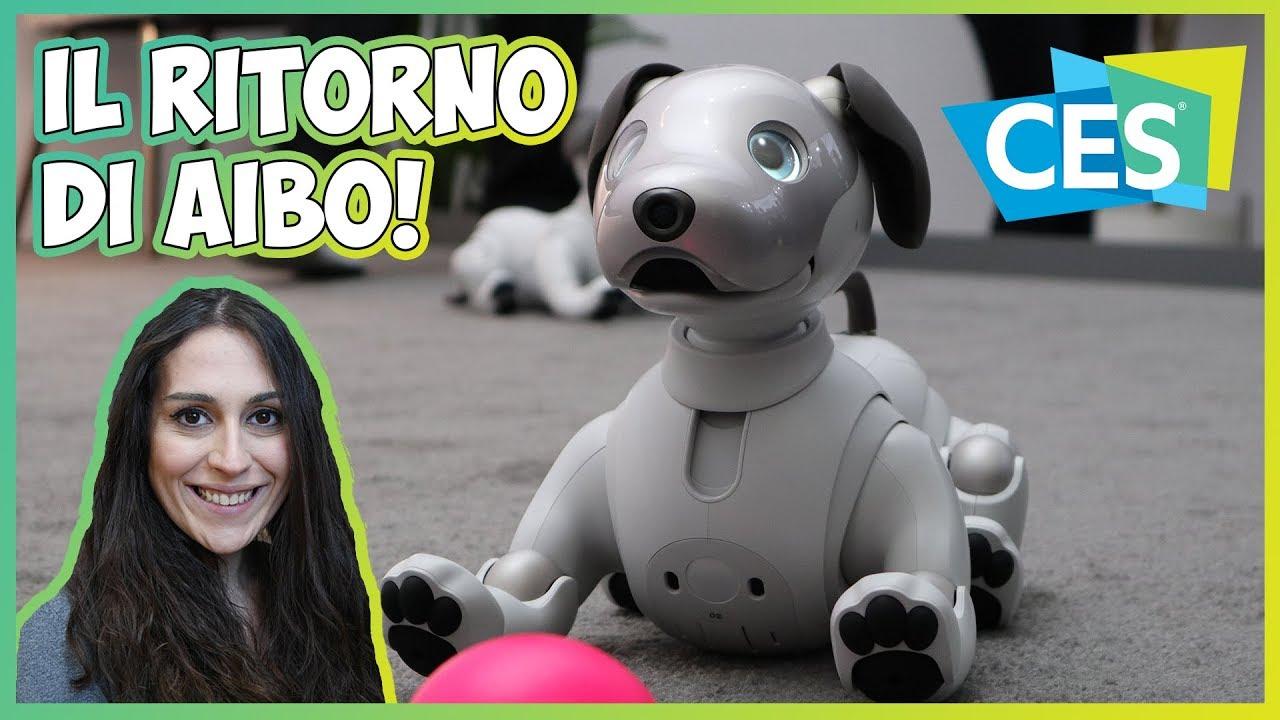 Sony aibo il ritorno del cane robot ces youtube