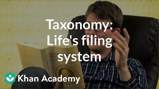 Taxonomy: Life's filing system   Crash Course biology   Khan Academy