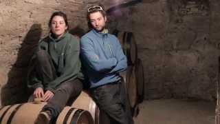 Éleni et Édouard Vocoret - Vignerons à Chablis - Vin - Bourgogne