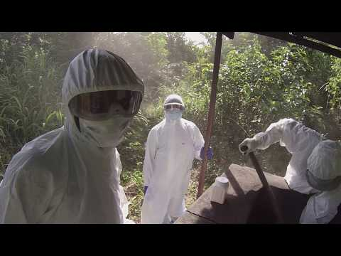 West African Ebola Outbreak
