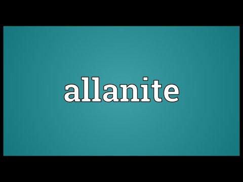 Header of allanite