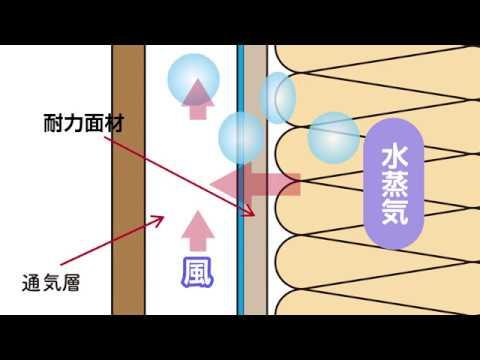 【HD】タイガーEXボード製品紹介映像