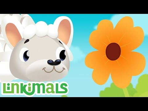 Linkimals™ - Counting Seeds Song | Kids Songs | Cartoons For Kids | Nursery Rhymes | Kids Learning