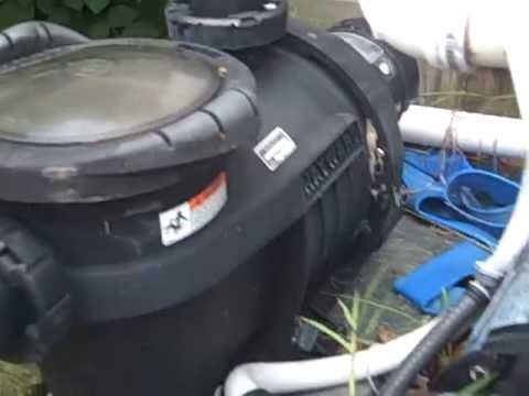 Noisy Pool Pump Youtube