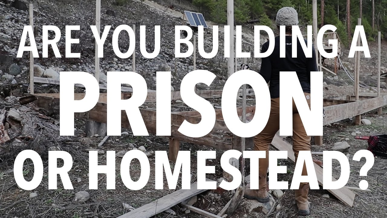 10 Reasons Your Seeds Aren39t Germinating Homesteading At Really Any Good Written Instructions So Here Is A Diagram Homestead Prison