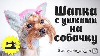 Шапка с ушками на собаку