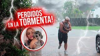 EL OSO Y CACHITO PERDIDOS EN EL HURACÁN! | 07 Ago 2018