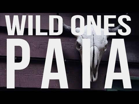 """Paia"" by Wild Ones (official video)"