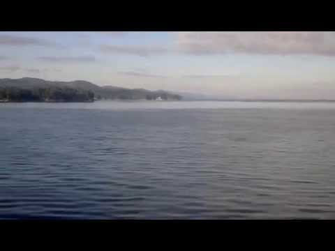 Ho Visto Le Orche In Canada! Whale Watching Alle Gulf Islands