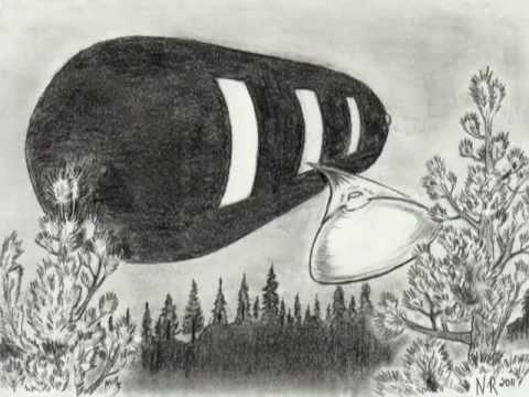 Eyewitness Discloses Startling 1964 Alien UFO Encounter