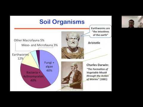 Lecture 6: Earthworm-enhanced Remediation of Soil with Organic Contaminants (Ji/Nanjing)