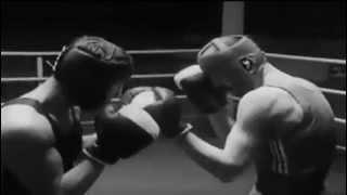 Бокс не драка это спорт