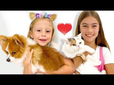 Stacy y Nastya intercambiaron sus mascotas