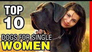 Top 10 Best Dog Breeds for Single Women Living Along