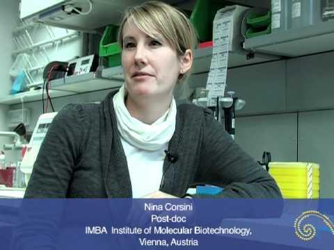 Nina Corsini on research in Vienna