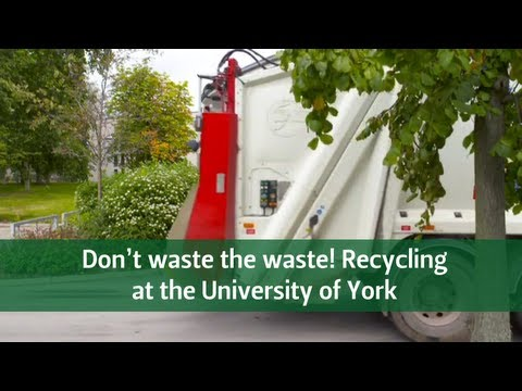 Don't Waste The Waste! Recycling at The University of York
