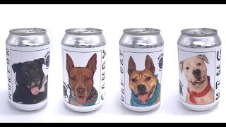 Brewery Helps Shelter Dogs Find Forever Homes — By Putting Their Faces On Beer Cans