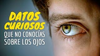 10 Datos Curiosos Que Desconocías Sobre Los Ojos
