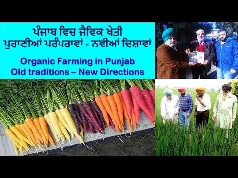 Organic Farming in Punjab  (Old Traditions, New Directions}