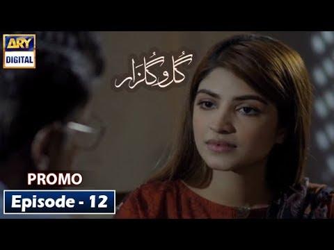 Gulo Gulzar Episode 12 (Promo) - ARY Digital Drama