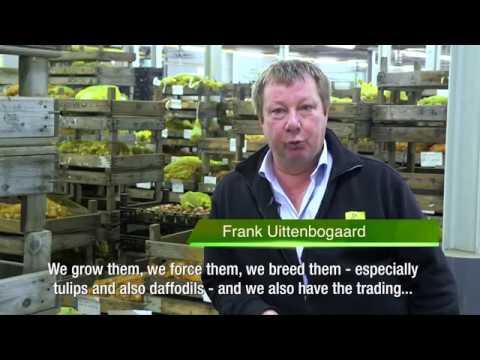 JUB Holland won the Dutch Horticultural Entrepreneur's Prize 2017