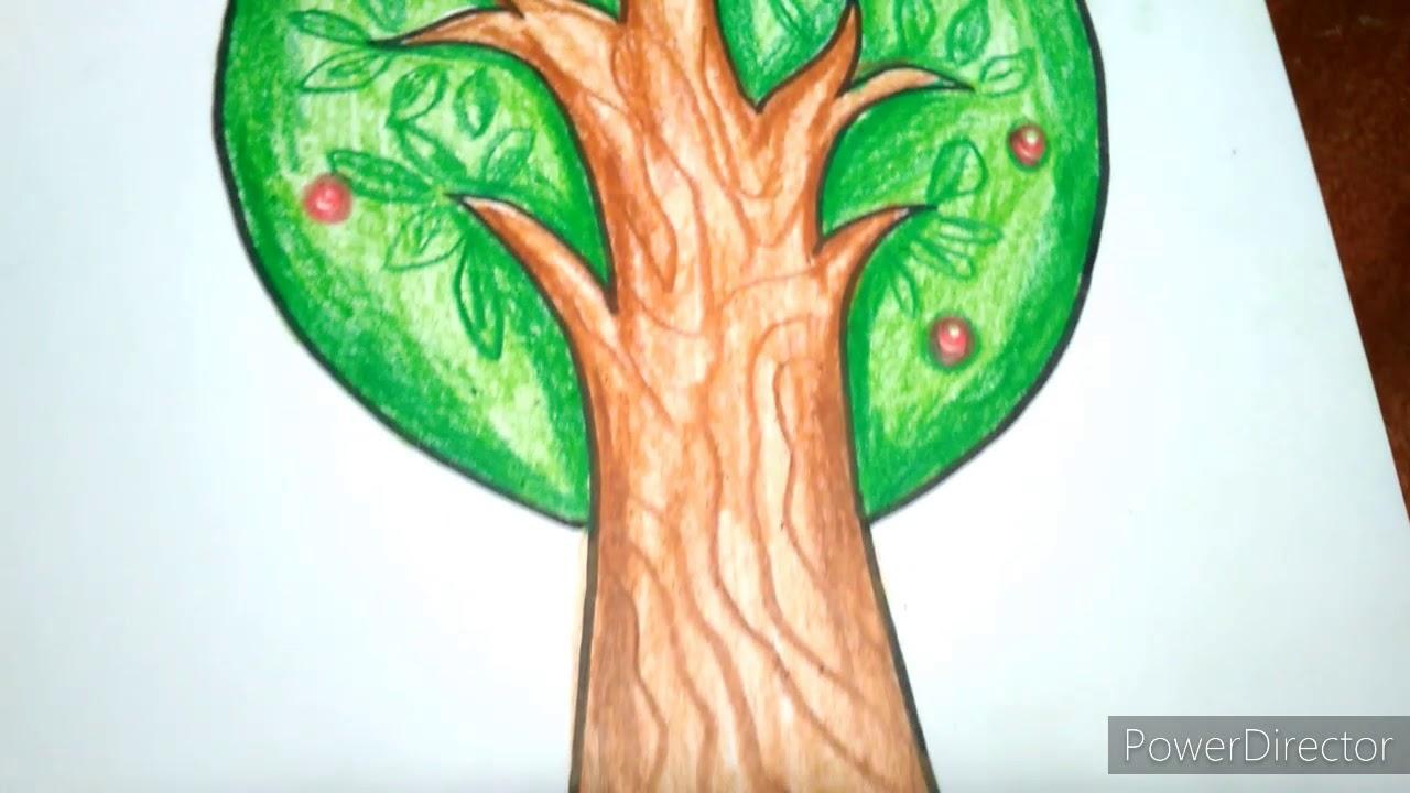 mewarnai gambar pohon