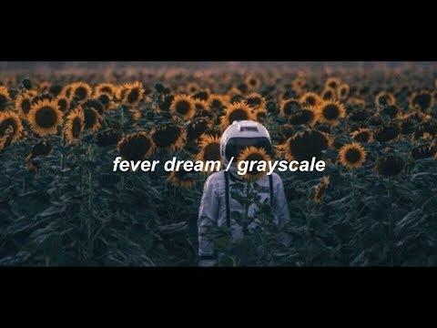 fever dream / grayscale (lyrics)