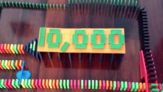 Epic Domino Rally Project For 10,000 TyDominoGuy Channel Views!