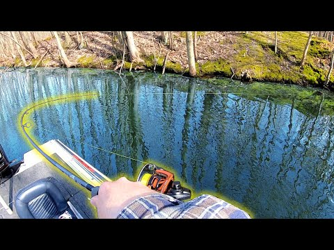 Catching UNLIMITED Amounts Of Bass In The SECRET Lake (So Many Fish)