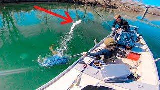 LUCKY NET JOB SAVES BIG FISH! Winter River Fishing GIANT Baits For Huge Musky