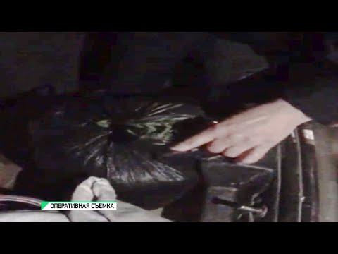 Сотрудники полиции изъяли у бийчанина почти полкилограмма марихуаны (04.06.20г.,Бийское телевидение)