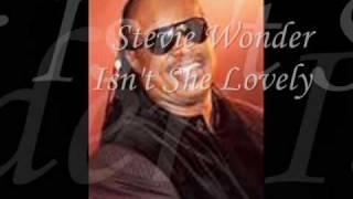 Stevie Wonder Isn 39 T She Lovely