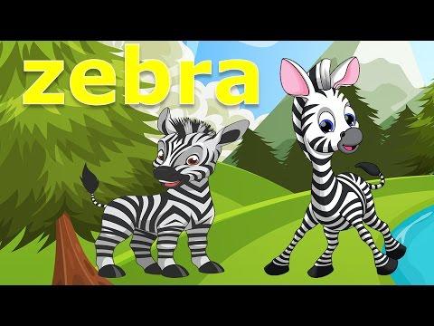 Dạy bé học các con vật tiếng anh | em tập đọc con ngựa vằn con rắn | Dạy trẻ thông minh sớm