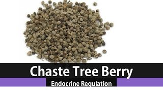 The Health Benefits Of Vitex Chaste Tree Berry