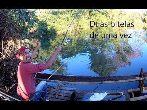 Download FISGUEI DUAS BITELAS DE UMA VEZ
