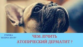 02.02.18 Атопический дерматит собак