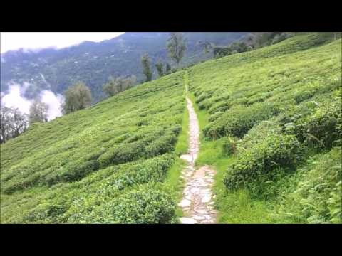 Delhi to North East Travel-Part 1 (Gangtok) Hindi