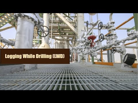 Logging While Drilling (LWD)