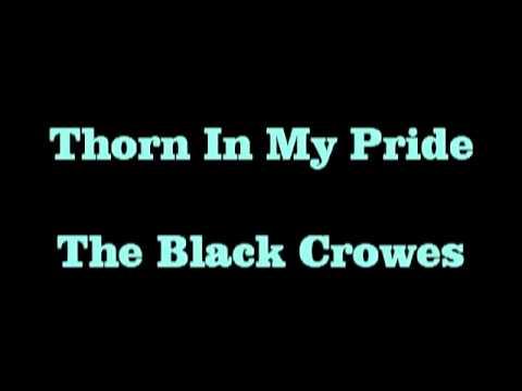 Thorn In My Pride   Black Crowes